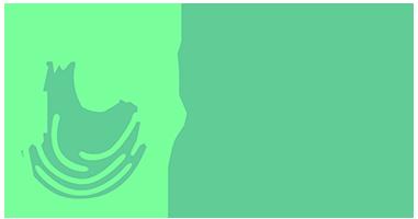 Logo Lleida Control_mini